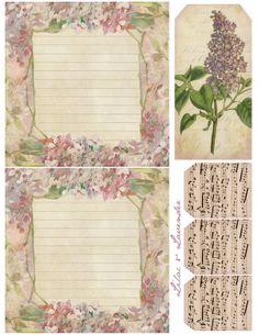 Lilac & Lavender
