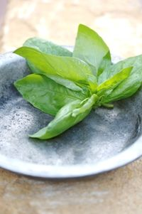 Fresh basil from Food from the heart. Courtesy of Lapa Publishers, photo by Adriaan Vorster South African Recipes, Fresh Basil, Spinach, Vegetables, Heart, Food, Vegetable Recipes, Eten, Veggie Food