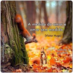 A medida do amor é amar sem medida.    (Victor Hugo)    Os animais também sentem e amam! Proteja o meio ambiente!     Acesse também...