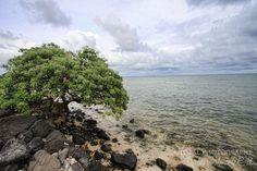 Windward Coast - Oahu - Hawaii