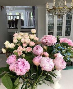 Most Beautiful Flowers, My Flower, Pretty Flowers, Wild Flowers, Piones Flowers, Estilo Grunge, Flower Aesthetic, Planting Flowers, Floral Arrangements