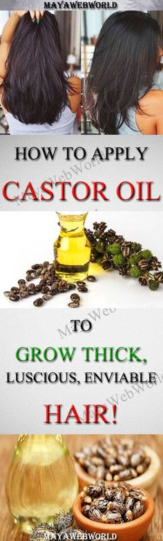 APPLY CASTOR OIL THIS WAY TO GROW THICK, LUSCIOUS, ENVIABLE HAIR! – MayaWebWorld