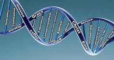 What would be in your DNA?