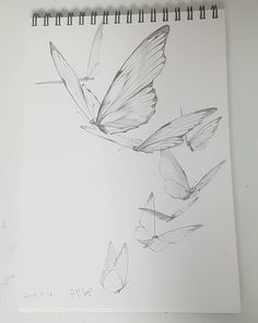 No photo description available. Drawing Sketches, Pencil Drawings, Art Drawings, Pencil Drawing Inspiration, Butterfly Sketch, Nature Sketch, Object Drawing, Industrial Design Sketch, Sketch Design