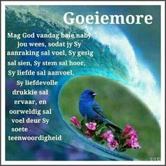 Good Night Wishes, Good Morning Good Night, Good Morning Quotes, Evening Greetings, Good Morning Greetings, Lekker Dag, Afrikaanse Quotes, Goeie More, Special Quotes