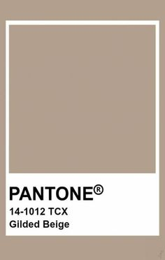 Pantone Nomad The bloom is really a image of kindness and acceptance; Beige Color Palette, Colour Pallete, Colour Schemes, Beige Colour, Color Trends, Pantone Swatches, Color Swatches, Pantone Colour Palettes, Pantone Color