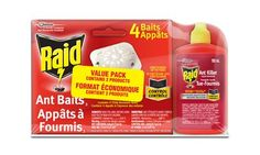 Raid 2-Piece Ant Killer Combo Pack