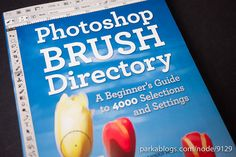 Book: Photoshop Brush Directory: A Beginner's Guide to 4000 Selections and Settings