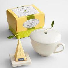 Rejuvenation Tea Gift Set. A beautiful tea for one set from Tea Forte -- one of my fave tea companies ever! This set is truly elegant and a perfect gift.