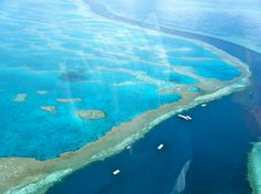 One of the most beautiful natural gifts to the continent of Australia is, Great Barrier Reef. The breathtaking beauty of world's largest coral reef . Brisbane, Melbourne, Perth, Great Barrier Reef, Belize Barrier Reef, Cairns, Work And Travel Australien, Tasmania, Places To Travel