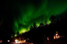 Kakslauttanen, Finland. Go for Kaamos (Dec-Jan)  Cabins and activities in Saariselkä http://www.saariselka.com