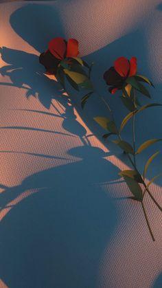 Look Wallpaper, Scenery Wallpaper, Wallpaper Iphone Cute, Galaxy Wallpaper, Flower Wallpaper, Wallpaper Backgrounds, Iphone Wallpaper Tumblr Aesthetic, Aesthetic Pastel Wallpaper, Tumblr Wallpaper