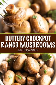 chicken side dishes Buttery Crockpot Ranch Mushrooms - This quick and easy side dish is made using only 3 simple ingredients! Buttery, and full of ranch flavor, the crockpot does the work for you with this mushroom side dish! Crockpot Side Dishes, Side Dishes Easy, Side Dish Recipes, Side Dishes For Chicken, Mushroom Side Dishes, Vegetable Side Dishes, Mushroom Appetizers, Mushroom Recipes, Slow Cooker Recipes