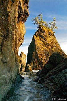 Thunder Rock Cove, Boardman State Park, Oregon; photo by Ron Niebrugge