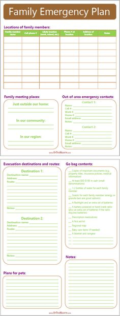 Emergency Plan Printable