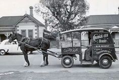 Milk being home delivered to your home by the horse and cart of the Craig-Lea Dairy, Thornbury, Melbourne, Victoria. Melbourne Victoria, Victoria Australia, Old Pictures, Old Photos, Melbourne Suburbs, Melbourne Races, Nostalgic Images, Historical Pictures, Melbourne Australia