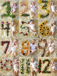 Quinn's First Birthday - Baby Products , Quinn's First Birthday Quinn Newman's Swan Themed Birthday baby shooting. Baby Collage, Baby Monat Für Monat, Baby Shooting, Milestone Pictures, Monthly Baby Photos, Foto Baby, Baby Poses, Newborn Baby Photography, Newborn Pictures