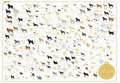 Bone up on 181 dog breeds - just in time for Westminster!  Pop Chart Lab --> Design + Data = Delight --> The Diagram of Dogs