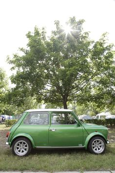 A vision in green. Classic Mini at the International Mini Meeting, 2012.