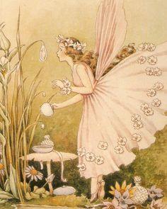 Fairy Sketch, Flower Fairies Books, Kobold, Cute Fairy, Vintage Fairies, Aesthetic Painting, Fairytale Art, Fairy Art, Magical Creatures