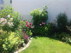 trockenmauer mit gem sebeet im reihenhausgarten unser kleiner doppelhaush lften garten. Black Bedroom Furniture Sets. Home Design Ideas