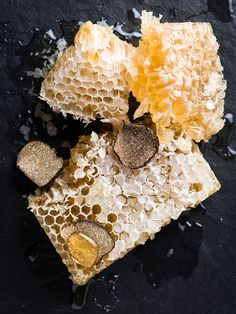 Tennessee truffle honeycomb for Regalis Foods. © Evan Sung. - See more at: http://theartofplating.com/editorial/evan-sung-chameleon-in-the-kitchen-2/#sthash.trQ4Ks2P.dpuf