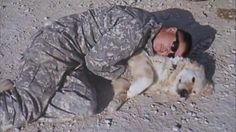 BREAKING NEWS: Fredie, the golden retriever who served 4 tours in Afghanistan, laid to rest.