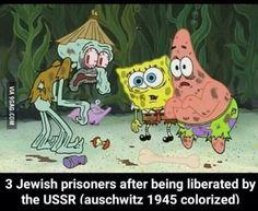 35 Best Colorized Memes Images Memes Fake History History Memes