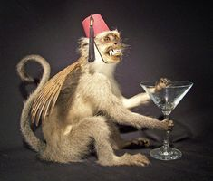 A WINGED MONKEY WITH A FEZ AND A COCKTAIL AND HE NEEDS TO BE MY BEST FRIEND THIS INSTANT