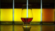 Scotch whisky fears bad hangover from US tariffs Cocktail Glass Types, Types Of Cocktail Glasses, Types Of Cocktails, Fun Cocktails, White Wine, Red Wine, Expensive Whiskey, Distinguish Between, Scotch Whisky