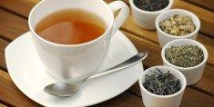 Qual doença você deseja curar através do chá? | Tudo sobre Chás