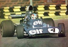 Patrick Depailler 1974