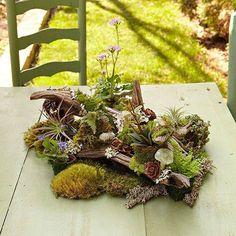Tabletop Woodland Garden How to ---> http://www.bhg.com/gardening/container/plans-ideas/tabletop-woodland-garden/