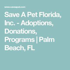 Save A Pet Florida, Inc. - Adoptions, Donations, Programs   Palm Beach, FL