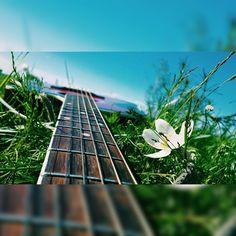Еще одна фотография за сегодняшний день, моя любимая гитара ❤☺ #me #likeforlike #like #followme #picture #favorite #music #l4l #follow #rockmusic #myguitar #guitar #15secondcover #cover #makeup #fashion #rockmusic #dreamcatcher #tattoo #tattoogirl #selfie #samsung #bmx #nomakeup #fashion #makeup #GoodNight #likelike #follow #nature #sky #singer #song #sing