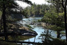 Book Secret Cove Cottage Suites, Canada on TripAdvisor: See 7 traveler reviews, 2 candid photos, and great deals for Secret Cove Cottage Suites, ranked #1 of 1 specialty lodging in Canada and rated 4 of 5 at TripAdvisor.