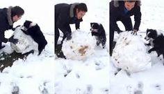 Resultado de imagen de hacer un muñeco de nieve