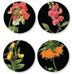 Thomas Paul Florilegium Dinner Plates