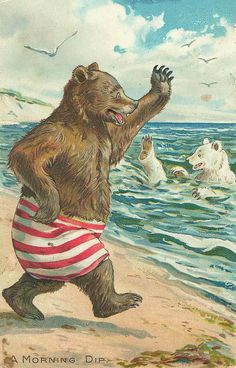 'A Morning Dip' -- Bear strides confidently to the water in his new red and white striped board shorts... (Beach Bears)
