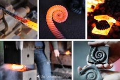http://www.calnan-anhoj.ie/ekmps/shops/calnananhoj1/resources/Design/ammonite-fossil-by-calnan-anhoj.jpg