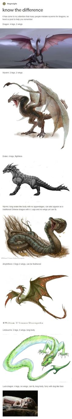 Most of these are actually types of dragons, but it's useful to know