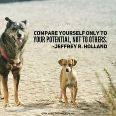 "More Holiness Give Me ✨ on Instagram: ""Compare yourself only to your #potential, not to others."" #iamachildofgod #beloyaltoyourgreatness #eternalperspective #elderholland #lds #ldsquotes #mormon #mormonquotes #comparison #dontcompare #dogsofinstgram #truegreatness #beyourself"""