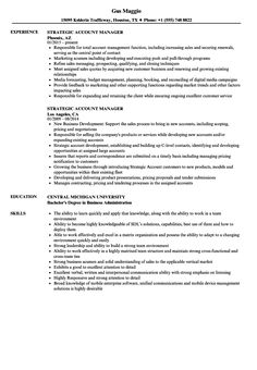 resume for accounts executive
