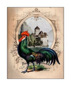 """Colorful French Rooster, 8x10 Print, Country Decor, Kitchen Art, """"French Chateau Rooster II"""""""