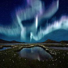 aurora borealis washington state - Google Search