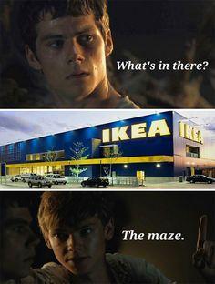 The Maze Runner Więzień Labiryntu Thomas Newt Newt Maze Runner, Maze Runner Funny, Maze Runner Quotes, Maze Runner Thomas, Maze Runner Trilogy, Maze Runner Series, Thomas Brodie Sangster, Hunger Games, Funny Memes