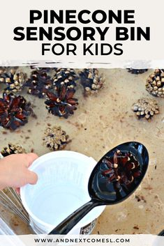 Looking for pinecone activities for toddlers and preschool aged kids? Then try this cinnamon scented pine cone sensory bin! #pinecones #kidsactivities #preschool #sensoryplay #sensorybins #sensorybin Fall Sensory Bin, Sensory Bins, Sensory Play, Sensory Activities For Autism, Infant Activities, Activities For Kids, Autumn Activities, Scented Pinecones, Sensory Bottles