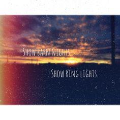 Show barn nights... Show ring lights.