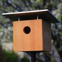 House hunting for your fine feathered friends? Here are some fun designs to make or buy.