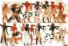 Animals were very important to Egyptian farmers. Animals helped them with jobs like trampling in the seeds, pulling the plough, eating unwanted grain or wheat and providing the Egyptians with food and drink. They kept animals such as cattle, goats, pigs, ducks, cows, and geese.